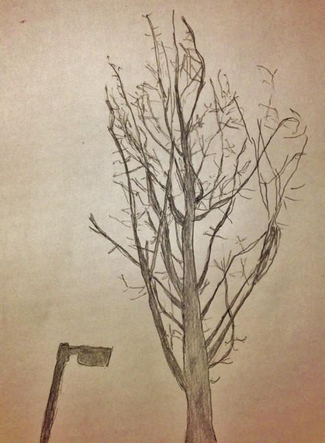 Philip-Nikilev-Tree-Drawing